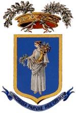 Commercialisti nella provincia di Pordenone