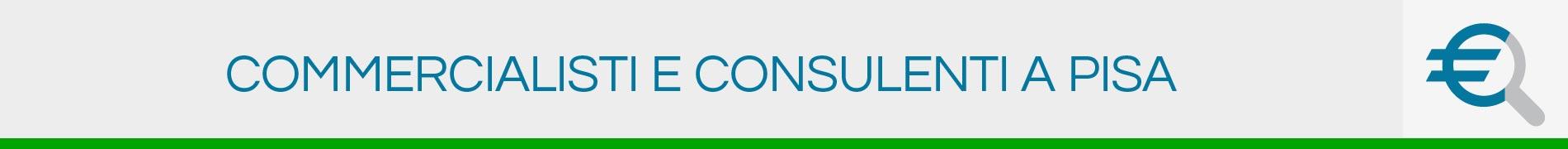 Commercialisti e Consulenti a Pisa